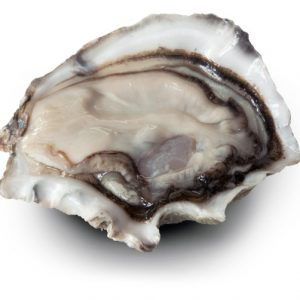 Clevedon Coast Fresh Oysters