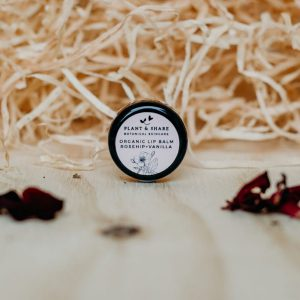 Rosehip and Vanilla Lip Balm Pot by Plant and Share